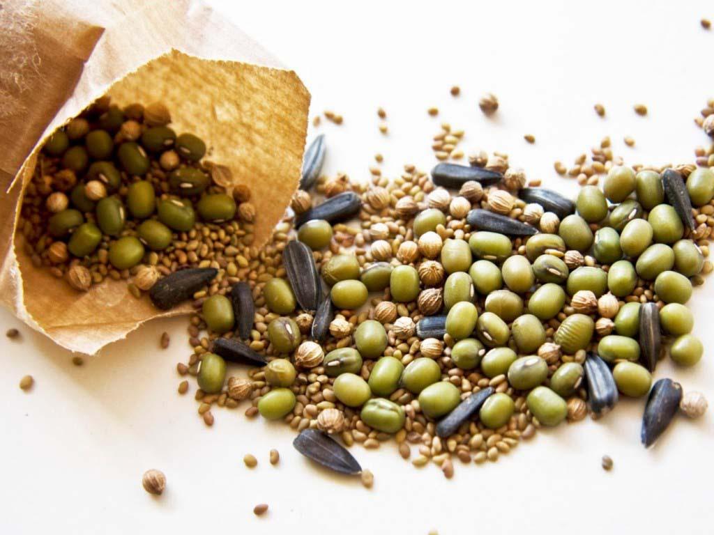 Семена: подготовка к посеву