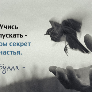 красивые картинки о жизни
