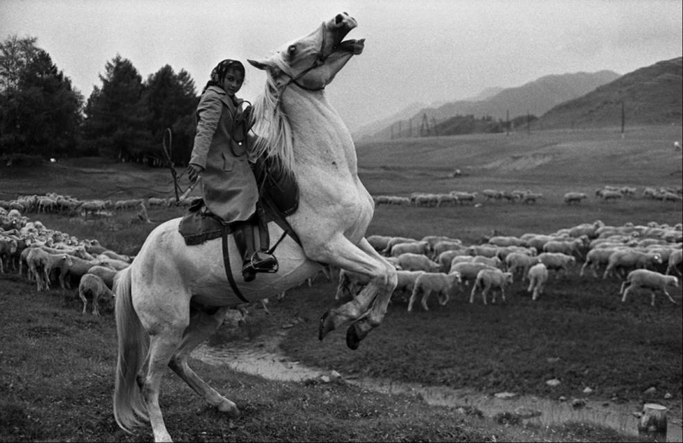 Пастушка на коне