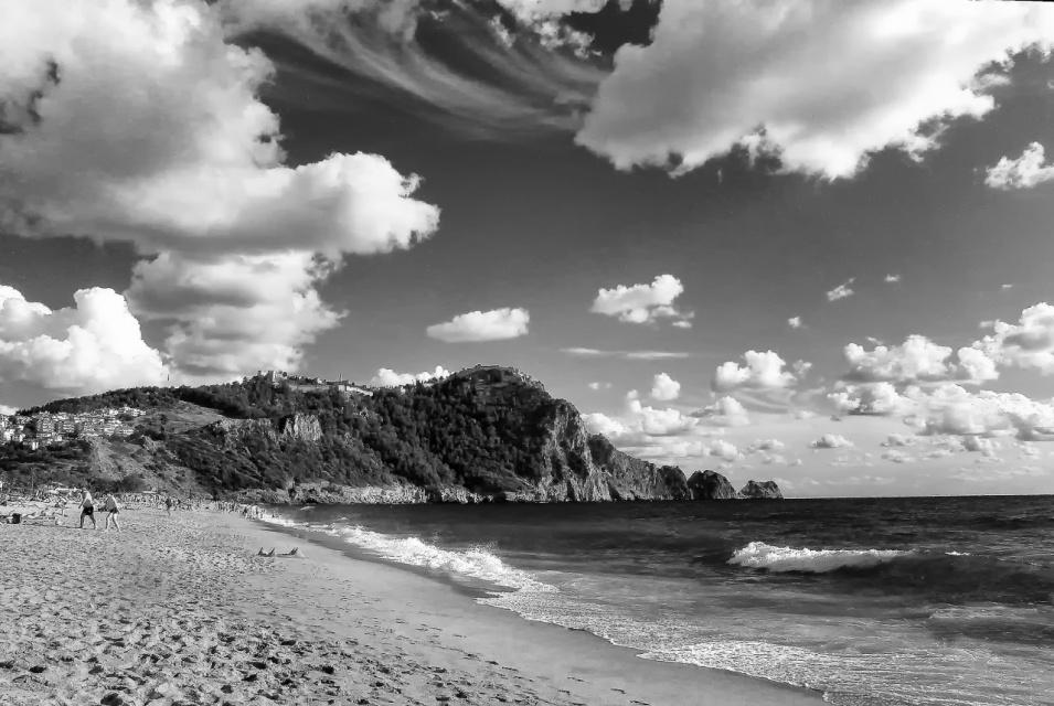Пейзаж в черно-белом .