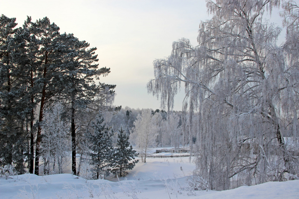 Зимняя картина