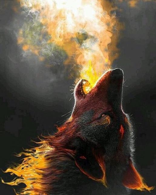 XXl век волка
