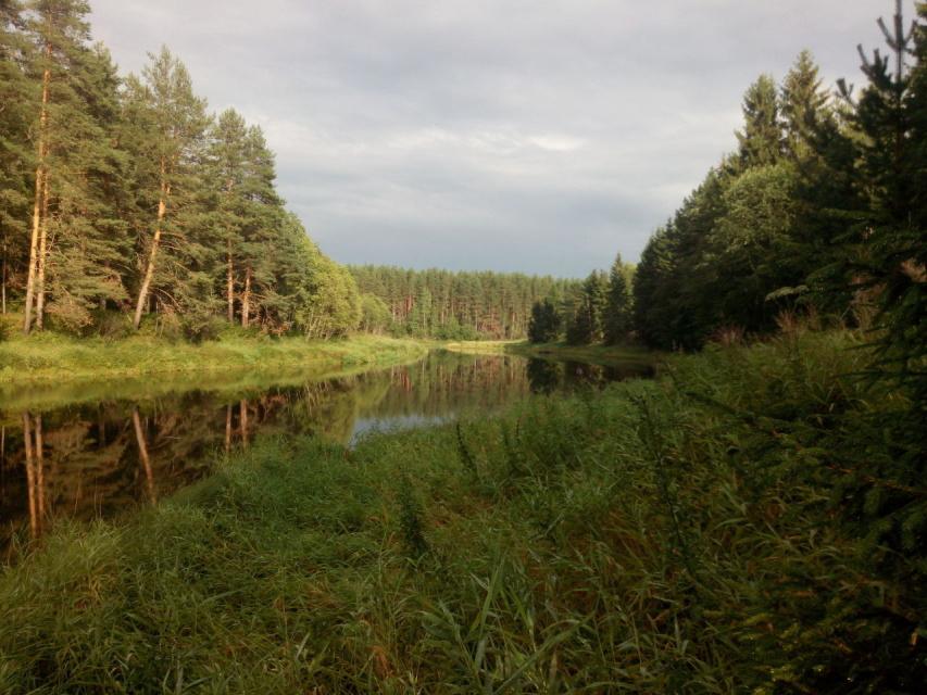Москва река. Подмосковье.