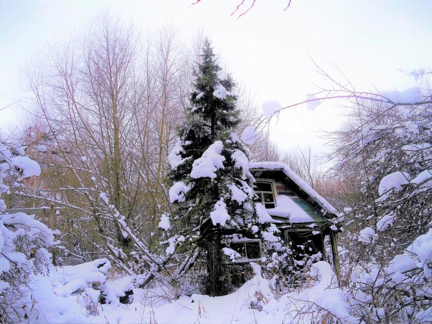 Живёт зима в избушке