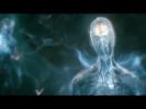 Штурм сознания: «Душа в наследство»