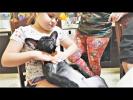Животные Приколы 2018 Самые Смешные и Милые Видео про СОБАК Май