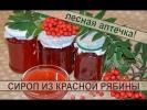 Сироп из ягод красной рябины