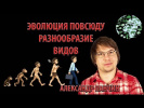 Александр Панчин — Эволюция Повсюду. Лекция. Разнообразие видов, эволюция человека, иммунитет.