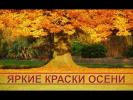 Яркие краски осени: красивая осенняя природа