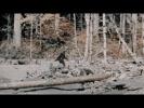 Скептический дайджест #25. Обломок НЛО и снежный человек собственной персоной