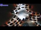Большой Новогодний Городской Автофлешмоб 2016-2017!