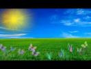 Детская песня Разноцветное лето