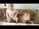 Приколы с животными 2017 Смешные Собаки и Кошки очень любят массаж Funny Pet Videos 2017