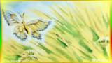 Песенка бабочек