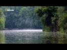 """Дунай.Европейская Амазонка"" (National Geographic)"
