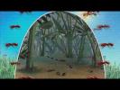 Детский клип - Муравьиная квартира avi