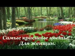 Музыка цветов.   Самые красивые цветы! Для женщин.