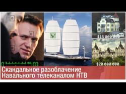 Скандальное разоблачение Навального телеканалом НТВ [СЖ]