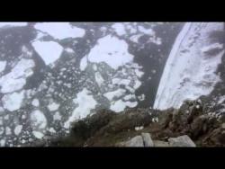Дикая природа России - Арктика
