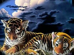 В Мире животных-релакс