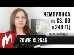 Чемпионка мира по CS:GO о 240 Гц — Zowie XL2546