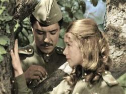 В бой идут одни старики. целый фильм (в цвете). DVDRip