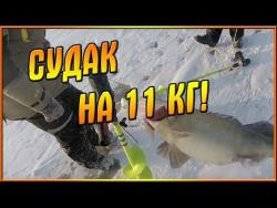 Зимняя рыбалка. Судак на 11 кг! Якорнуться!