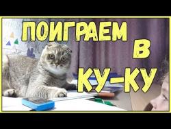 Приколы про школьников и котов 2017 Смешные Коты и дети школьницы прикол