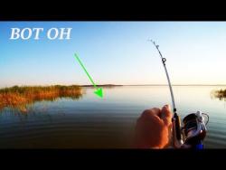 Рыбалка на карпа на фидер летом 2017- Рыбалка на видео
