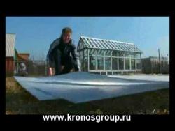 парник теплица из сотового поликарбоната Кронос