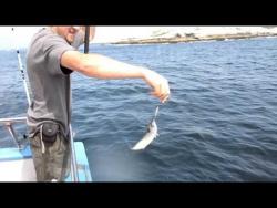 2009-08-08Рыбалка в океане.MOV