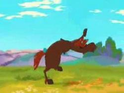 Song horse - Песня коня