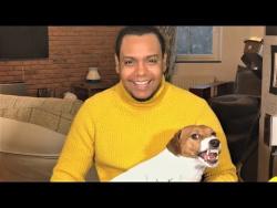 Животные Приколы 2018 Смешные видео Приколы с Собаками Самые милые Домашние Животные Любимые Питомцы