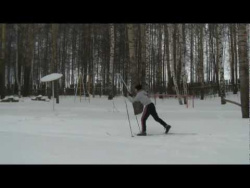 Лыжницы