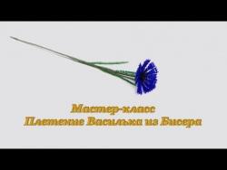 "Мастер класс ""Плетение Василька из Бисера"""