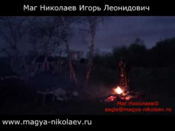 Ритуал Вуду через бычье сердце. Ритуал проводит Ведун Николаев.