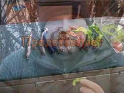 Силиконовые приманки.Рыбалка.Фильм Шорин Медиа   Авторы  Константин Шорин