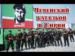 В Aлeппo лучше не соваться! Чеченский батальон страшно пугает бoeвuкoв