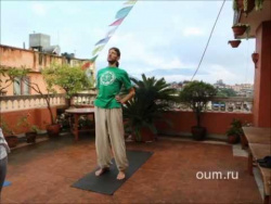 Йога для начинающих. Комплекс по йоге. Андрей Верба