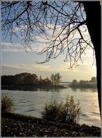 На реке Рейн.