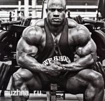 gallery_of_victor_martinez_bodybuilders_hd_wallpapers