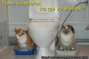 kotomatrix_04
