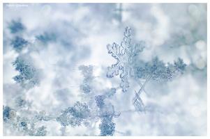 Снежинка =)