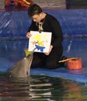 Черноморский дельфин в Питерском дельфинарии рисует море