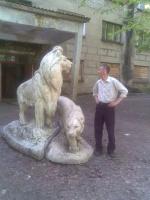 Лев и львица. Май 2010г.
