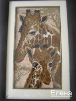 Жирафы ,животные саванны.