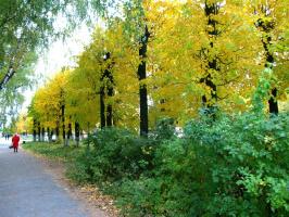 Тихая провинциальная осень.