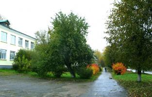 Октябрь, пасмурно,недавно прошел дождь. Ул.Ленина.