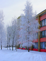 Мороз в МИНСКЕ