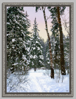 Зимой в лесу.